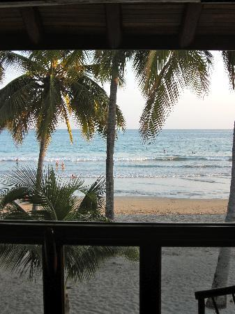 Samara Tree House Inn: View from the room