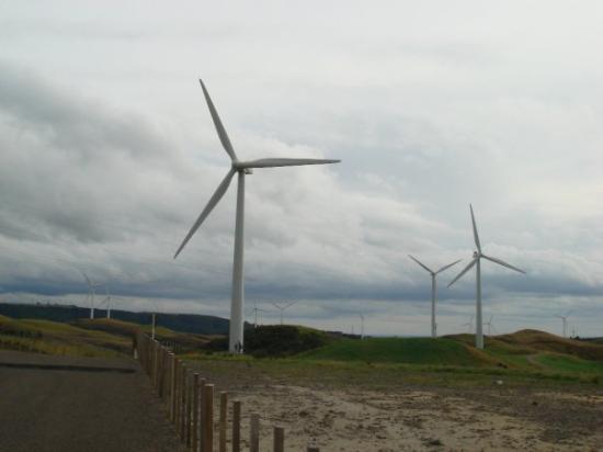 Palmerston North, Nouvelle-Zélande : Wind Farm!