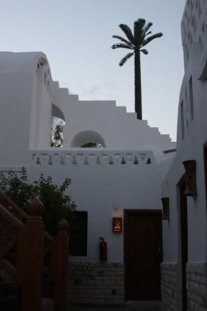 INMO Divers Home: After a one-hour taxi ride, we are in Dahab, a scuba-diving mecca. This is our hotel and diving