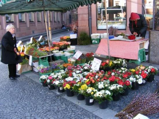 Μάιντς, Γερμανία: Market in Mainz