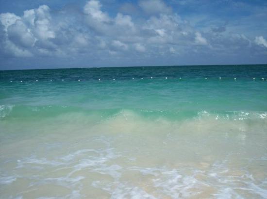 Coral Beach Hotel and Condos: Coral Beach