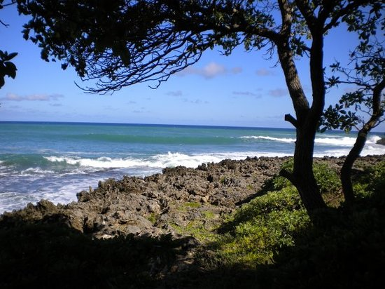Foto de Haleiwa