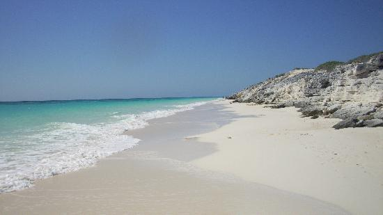 The Amazing Beach!