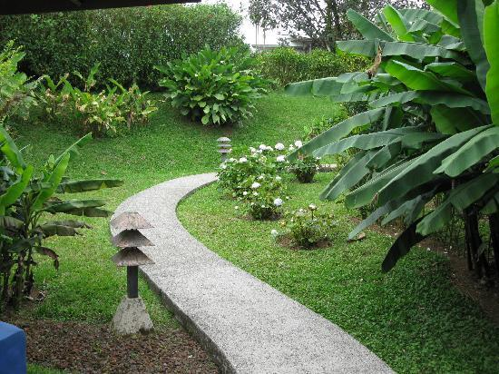 Villa Blanca Cloud Forest Hotel and Nature Reserve: Path to our cabin
