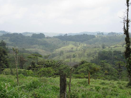 Villa Blanca Cloud Forest Hotel and Nature Reserve: rolling hills