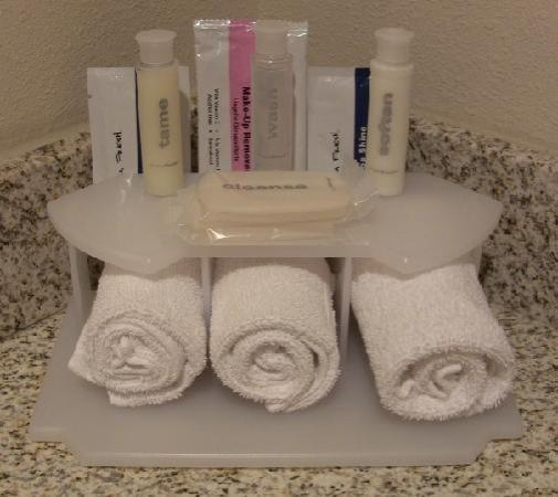 Socorro, NM: Several personal hygiene products are provided