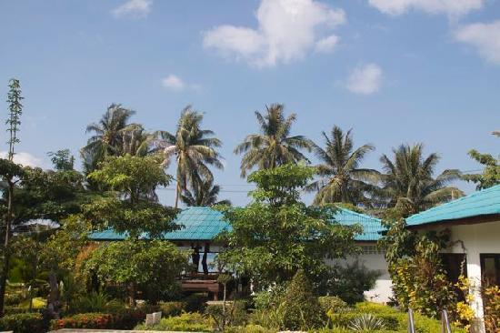 Ananda Wellness Resort: hotel grounds