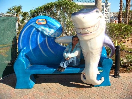 Aquarium Restaurant Photo