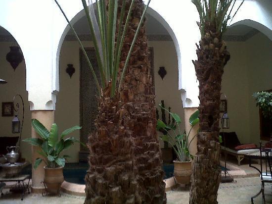 Riad Les Trois Palmiers El Bacha: interieur du riad