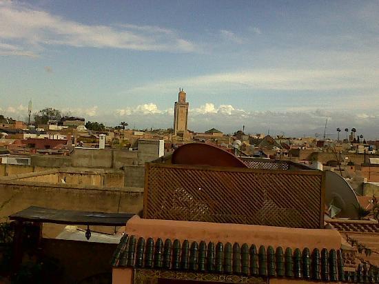 Riad Les Trois Palmiers El Bacha : vue de la terrasse