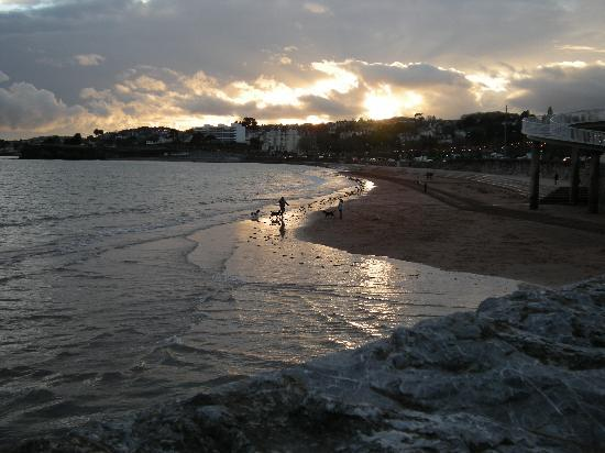 Abbey Lawn Hotel: Torre Abbey Beach in February...early evening