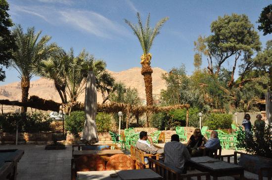 Pharaohs Hotel & Restaurant: pretty garden