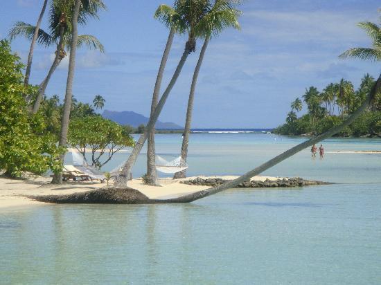 Tahaa, Polinezja Francuska: きれいな海