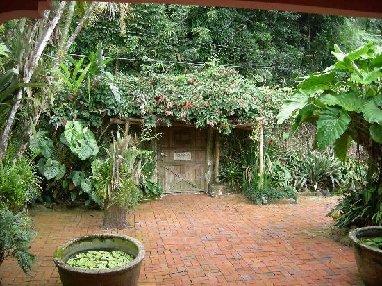 Casa Flamboyant: cour intérieur