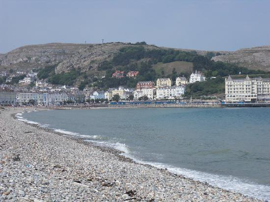 Bay Marine Hotel: clear view of the prom