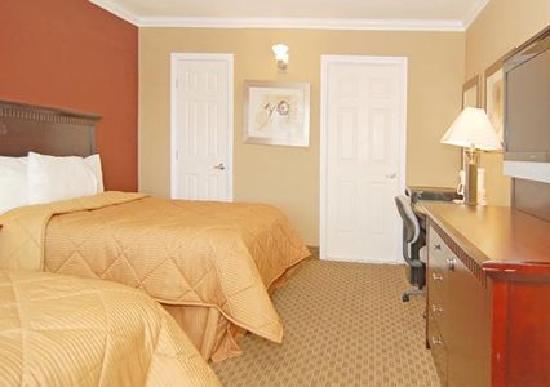Comfort Inn Near Hollywood Walk of Fame: Comfort Inn Room