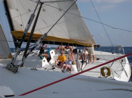OnDeck Ocean Racing: Very close...