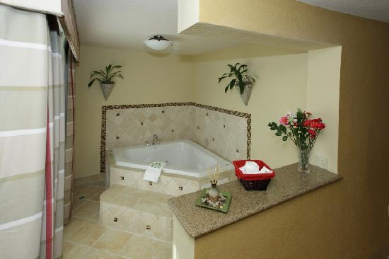 Country Inn & Suites By Carlson, Tampa Airport North: Whirlpool Suite