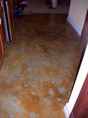 Pelican Bay at Lucaya: Very unusal floor in our suite reminds you of the ocean