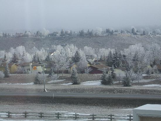 Ramada Cochrane: nice frosted trees :)