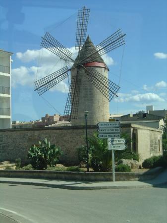 El Arenal-billede
