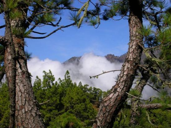 Santa Cruz de la Palma, Spania: La Caldera de Taburiente