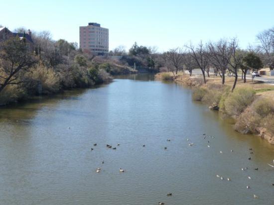 San Angelo, TX: The Concho River