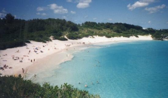 Hamilton, Bermuda: Elbow Beach, Bermuda