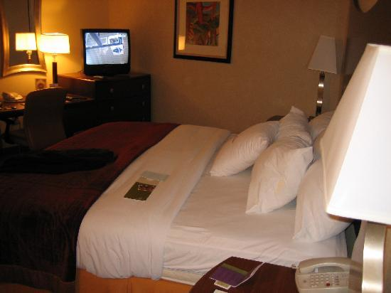 DoubleTree by Hilton Johnson City: That bed again