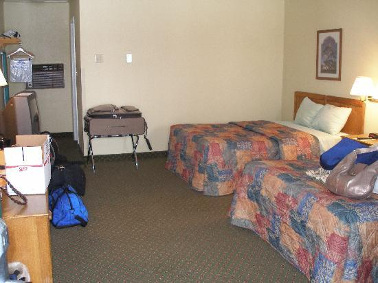 Cherrywood Lodge - Econo Lodge Inn & Suites : Our room 221
