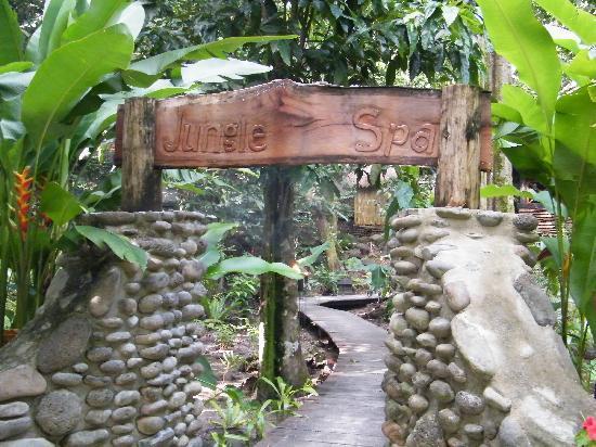 Qamea Resort And Spa Fiji: Entrance to the Jungle Spa