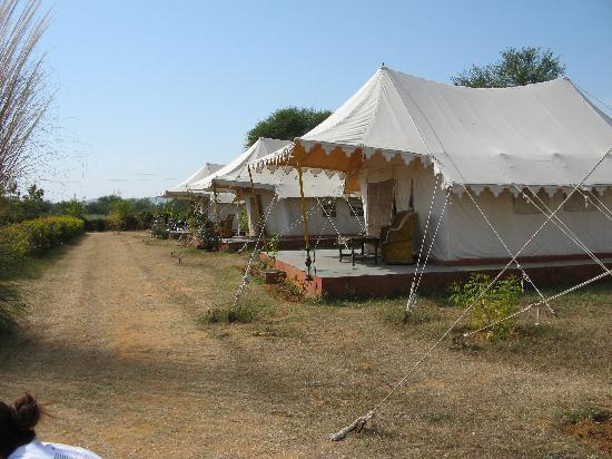 Jungle Niwas The tent accommodation & The tent accommodation - Picture of Jungle Niwas Ranthambore ...
