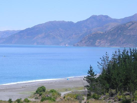 Waters Edge Bed and Breakfast: Kaikoura clear blue skys magic place