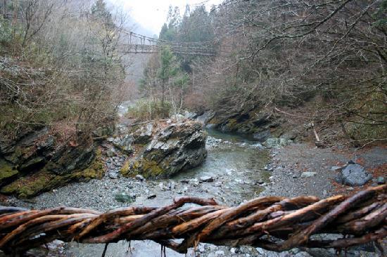 Miyoshi, Japón: 橋から、もう一つのかずら橋を観る