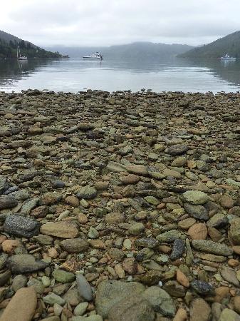 Furneaux Lodge: Misty morning - Endeaver Inlet