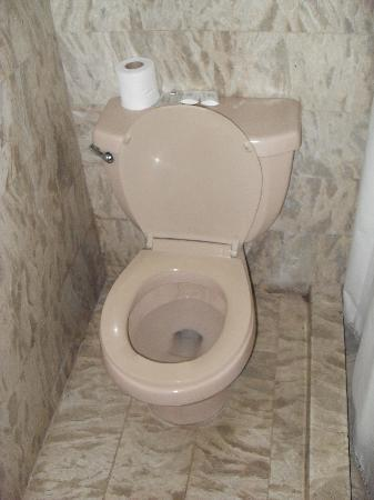 Clarkton Hotel: Toilet- surrounded by water stains.
