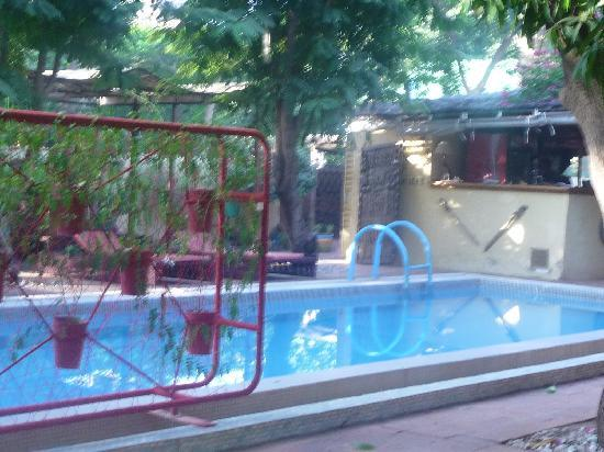 Hotel les Palmiers : The pool - welcome respite from the heat