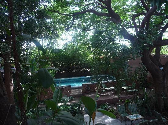 Hotel Tamana: The pool