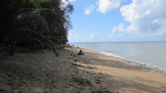 Quezon Province, Filipinas: ポリリオ港付近の海岸