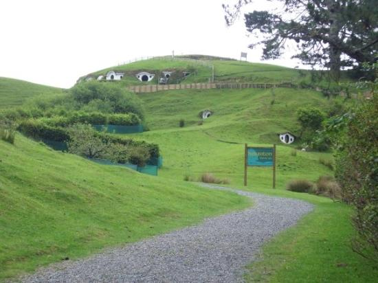 Matamata, New Zealand: The road the Hobbiton