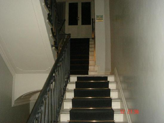 Hotel Alpi: vestibulo (escaleras)