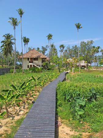 approaching Bangsak Village