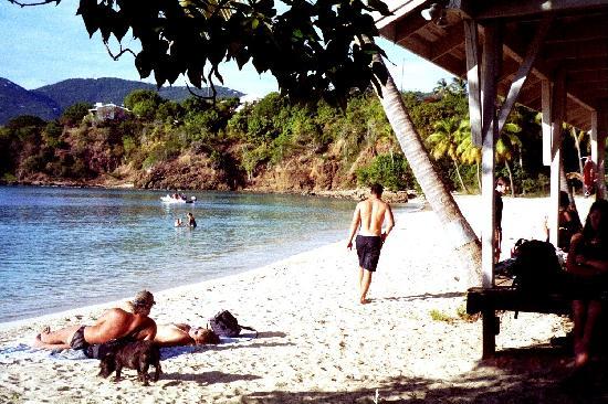 Water Island Adventures: Post-ride relaxation at Honeymoon Beach