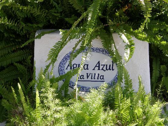 Agua Azul La Villa: Out front