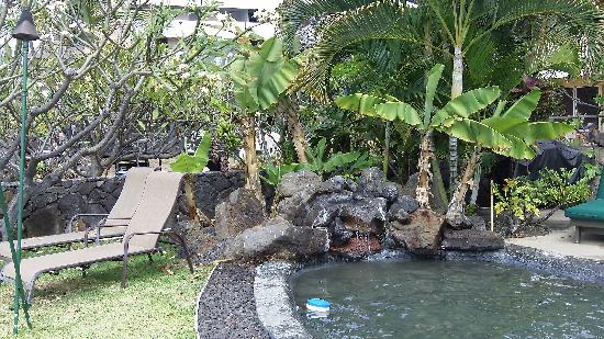Kona Sugar Shack: lounge chairs by the pool and waterfall