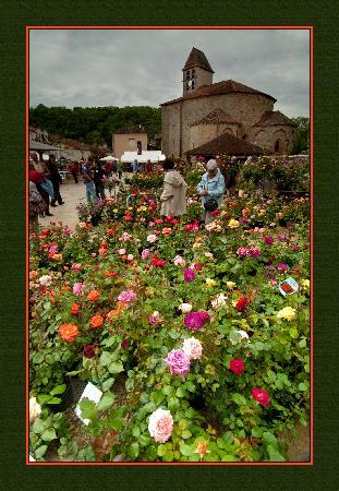 Chambres d'hotes at Puyfavard : Saint Jean de Cole's Les Floralies