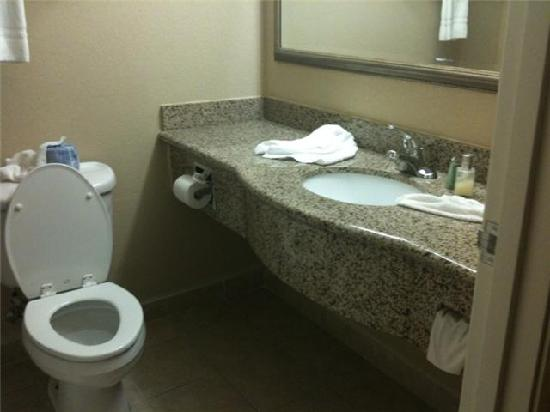 Country Inn & Suites By Carlson, Hobbs: bathroom (very small)