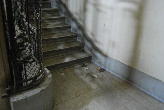 Cairo Center Hotel: escalera para subir al hotel