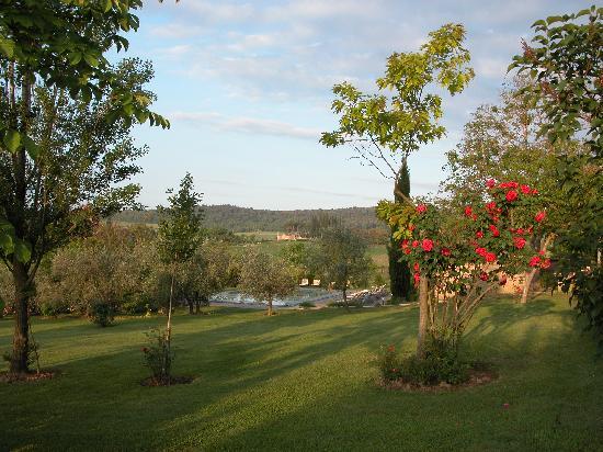 Tenuta di Corsano: Beautiful garden