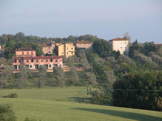 Tenuta di Corsano: Gorgeous views over rows of grapes